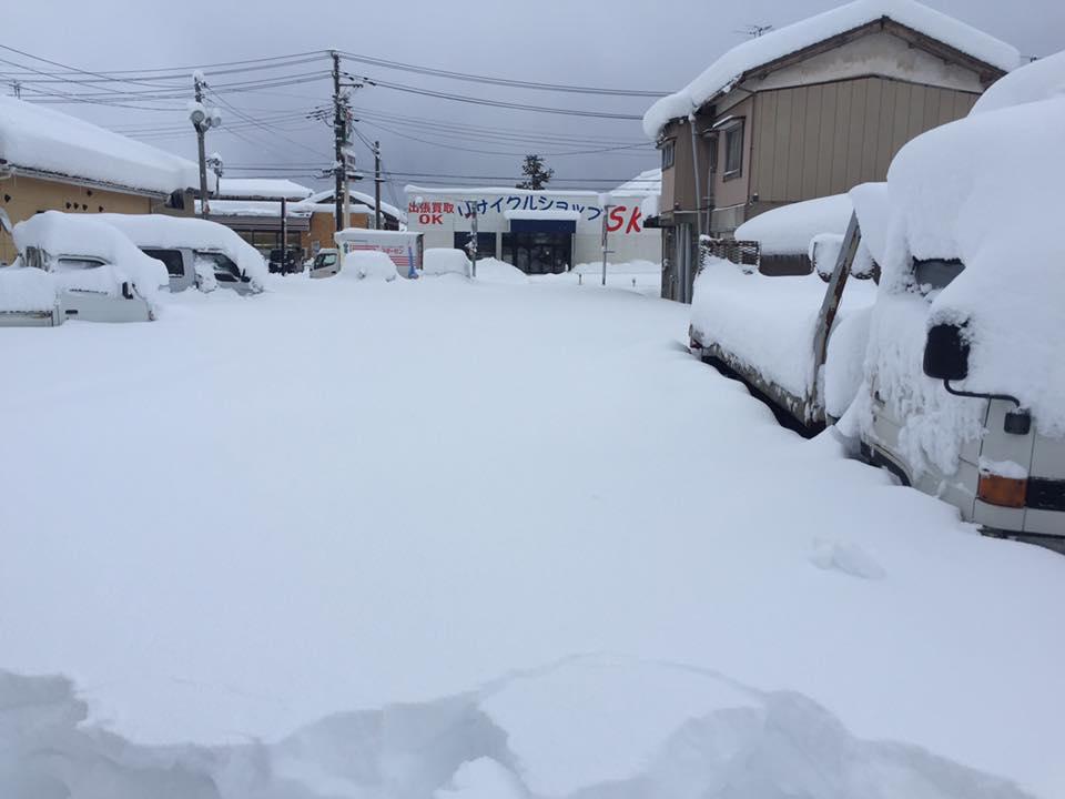展示場 大雪二日目