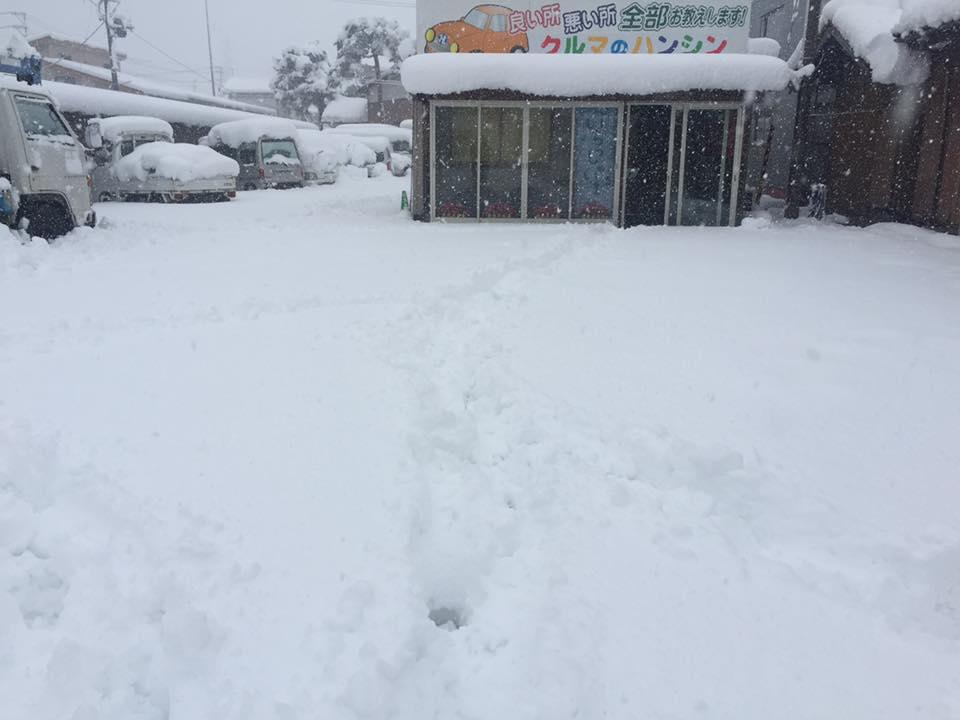 展示場 大雪初日